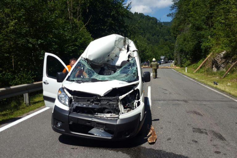 Verkehrsunfall nach Kollision mit Baumstamm